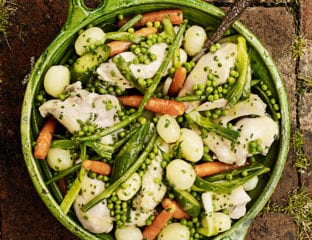 Poached chicken with summer vegetables and chive butter sauce