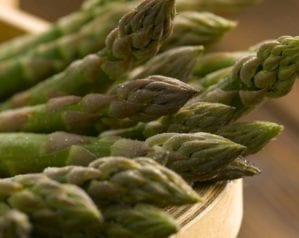Why is the British asparagus season so short?