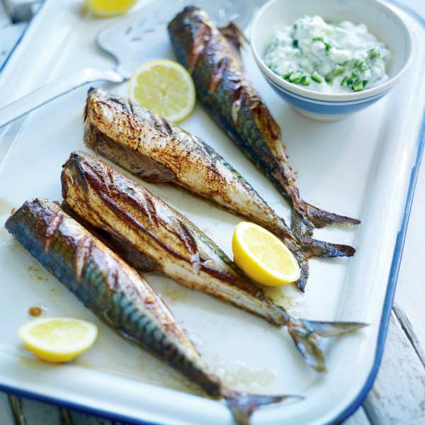 grilled spiced mackerel with creamy cucumber  delicious