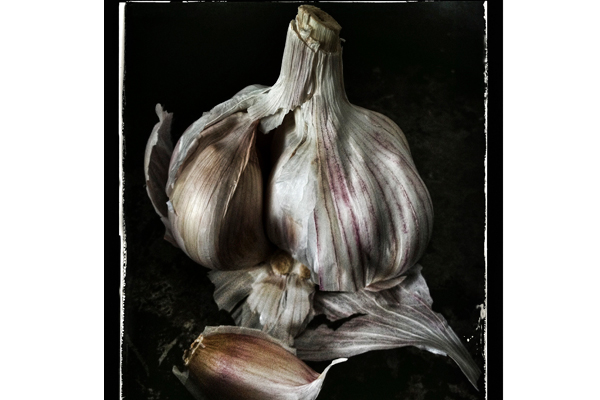 Food-Sn-apping--Lisa-Barber-(UK)---Garlic