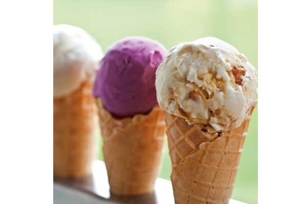 Salcombe-dairy-ice-cream