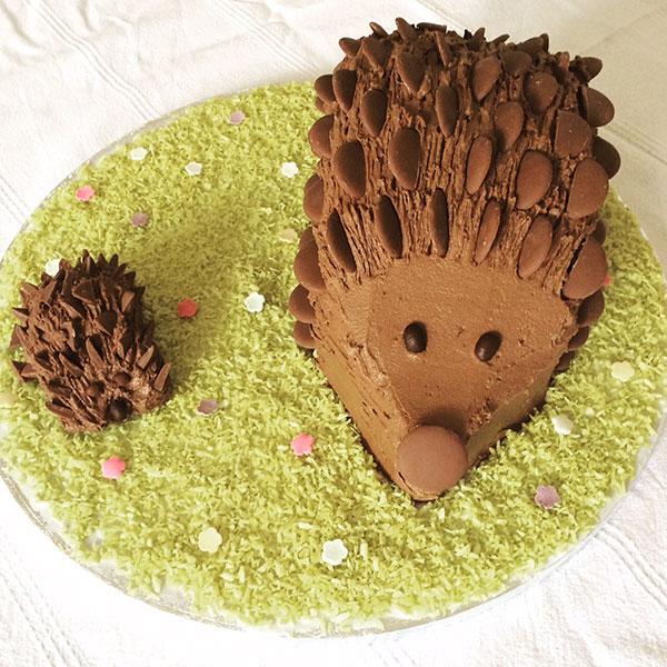 Fine How To Make A Chocolate Hedgehog Cake Delicious Magazine Funny Birthday Cards Online Inifodamsfinfo