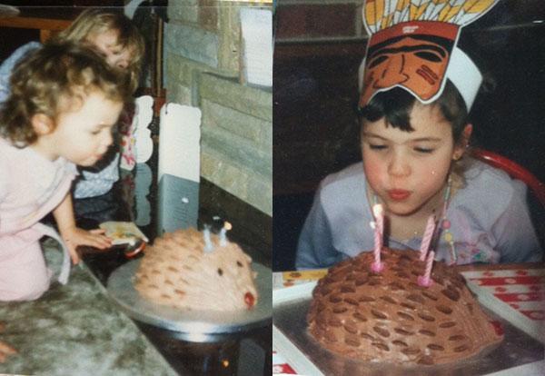 Phenomenal How To Make A Chocolate Hedgehog Cake Delicious Magazine Funny Birthday Cards Online Inifodamsfinfo