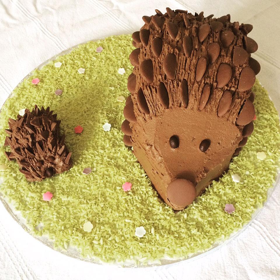 How To Make A Chocolate Hedgehog Cake Delicious Magazine