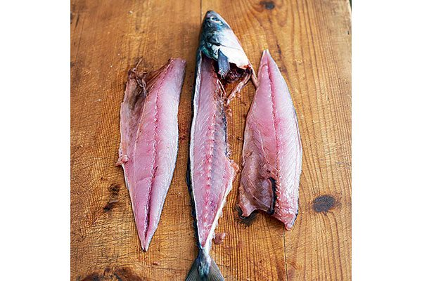 How-to-fillet-a-round-fish-7