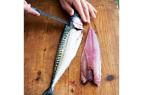 How-to-fillet-a-round-fish-5