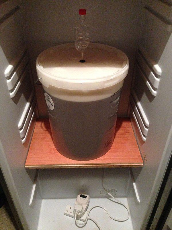 In-the-fermenting-fridge