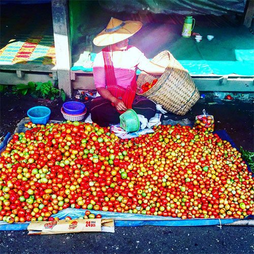 selling-tomatoes