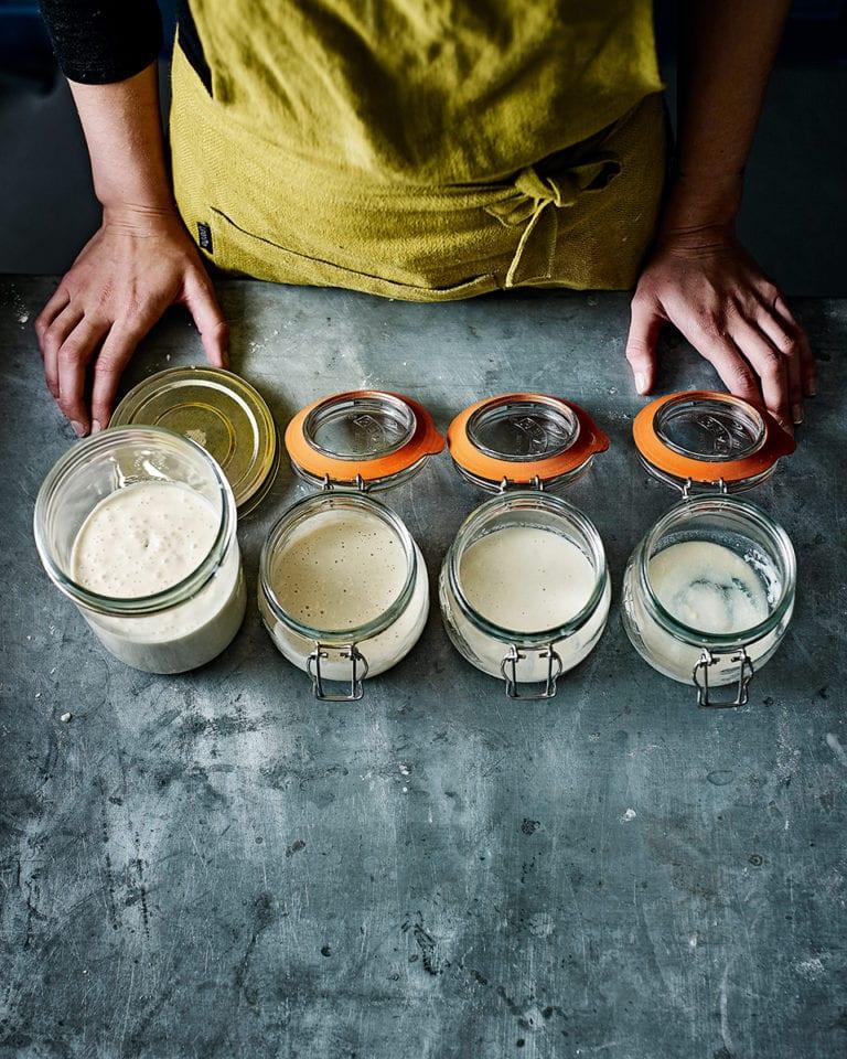 Sourdough starter and pre-ferment