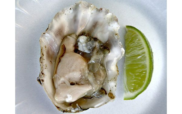 Little-Italy---oyster