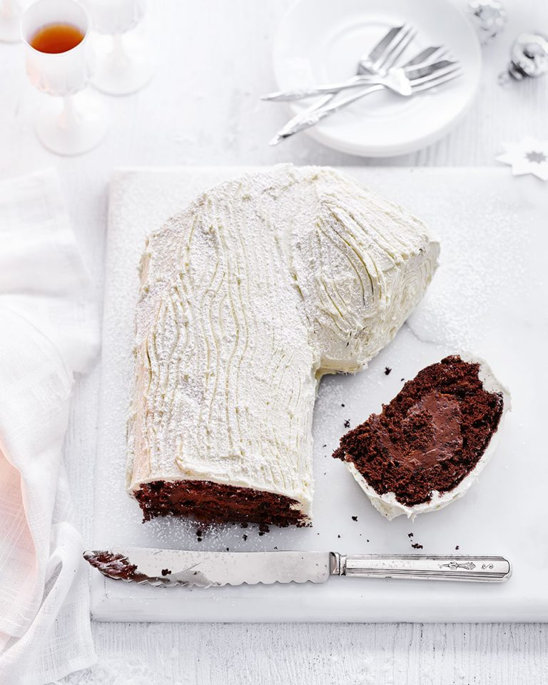 white and dark chocolate yule log with apricot