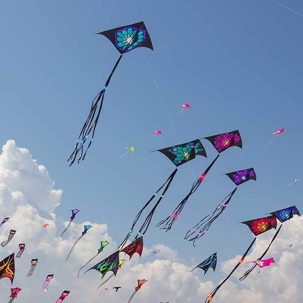 Burmuda-Easter-kites