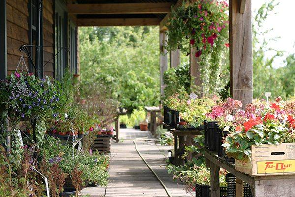 Beals-barn-gardens