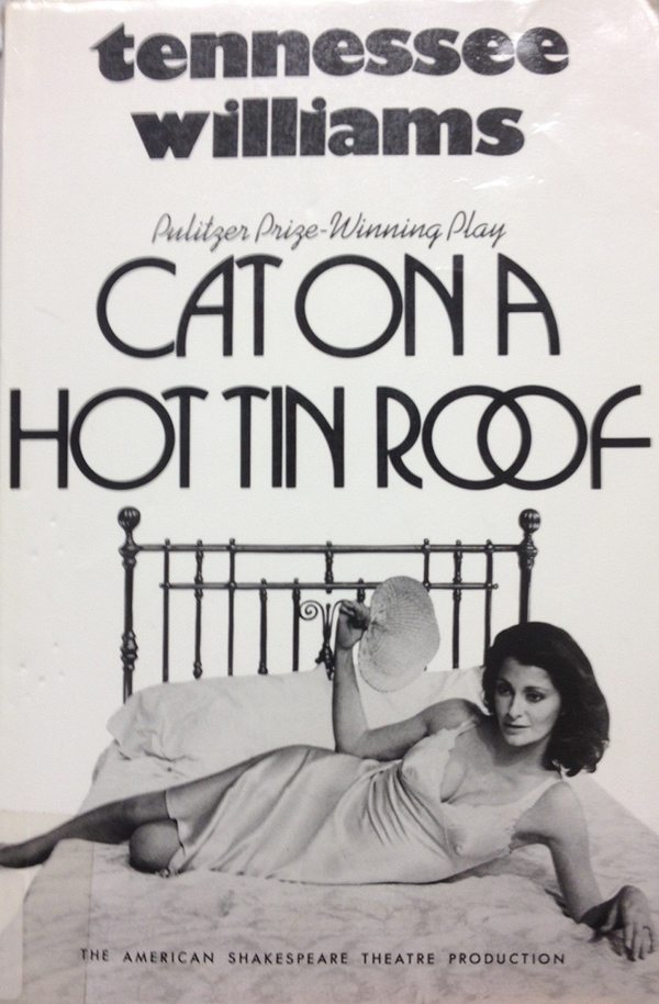 2.-cat-on-a-hot-tin-roof