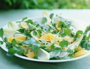 Orange and watercress salad