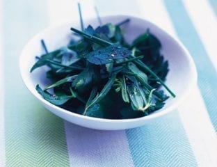 Herb leaf salad