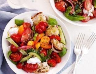 Tomato and bread salad with mozzarella