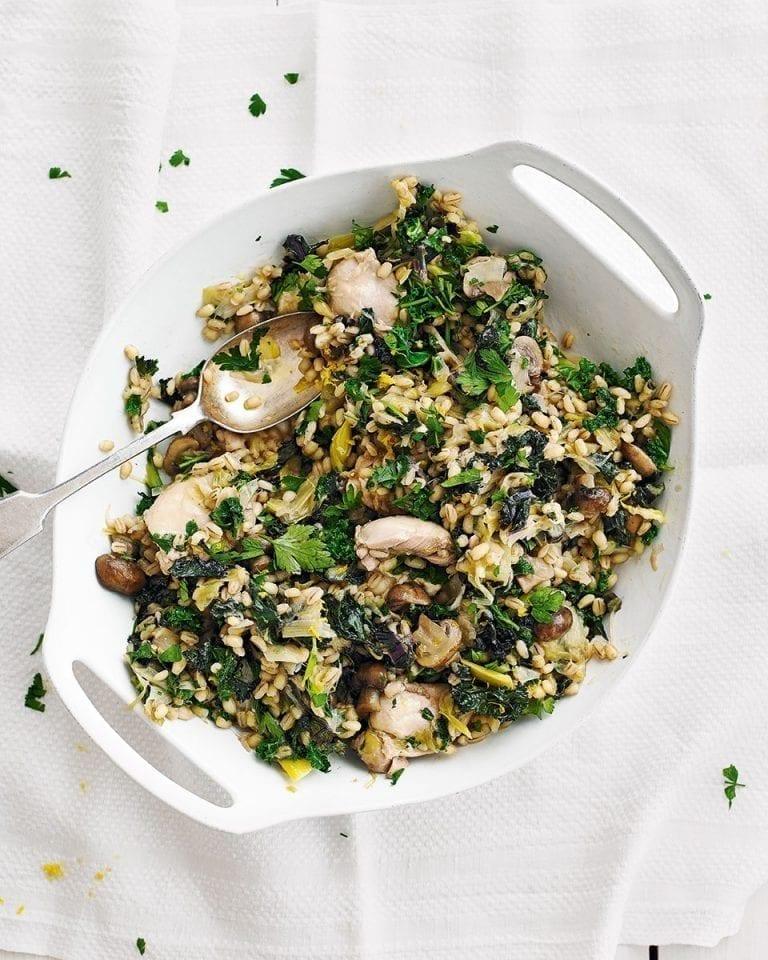 Chicken, mushroom and barley stew