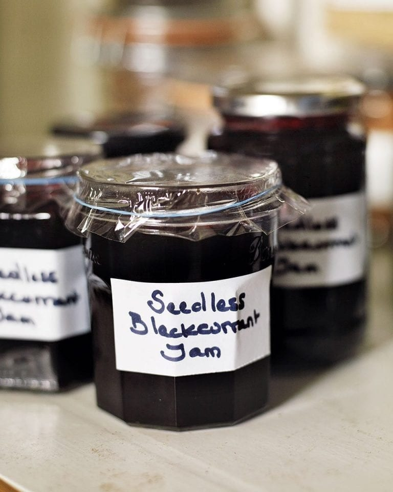 Seedless blackcurrant jam