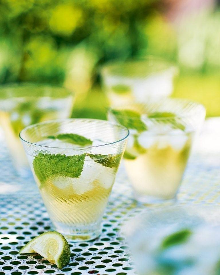Hugo Cocktails Recipe