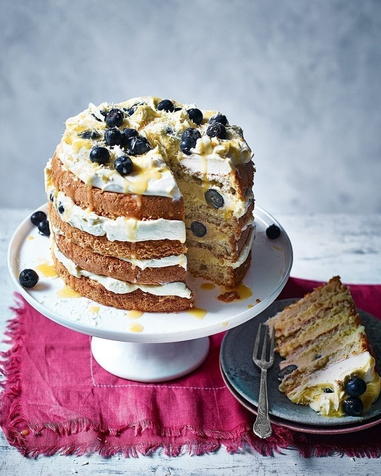 Frozen lemon and blueberry mousse cake
