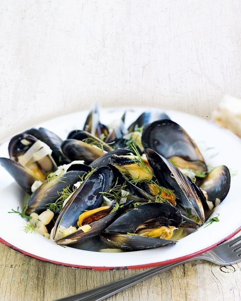 Mussels and cannellini beans in white wine