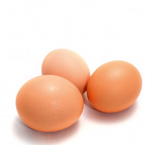 Five reasons to go to work on an egg