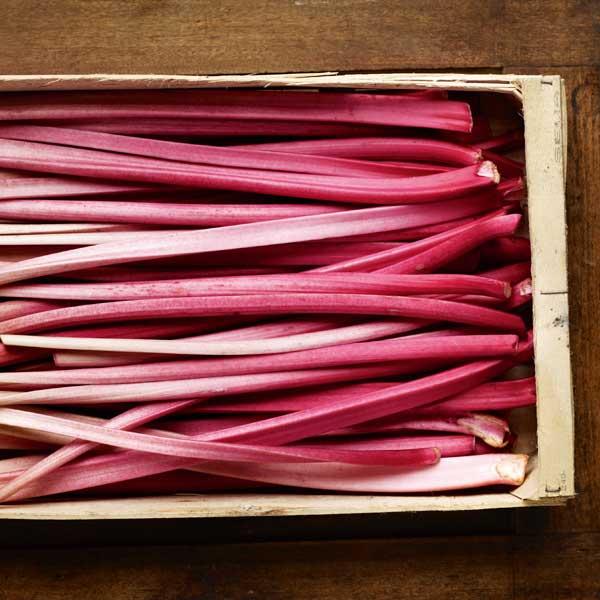 Go barmy for rhubarb