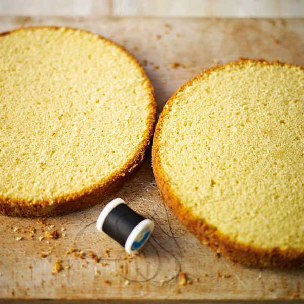 How to slice a plain sponge horizontally