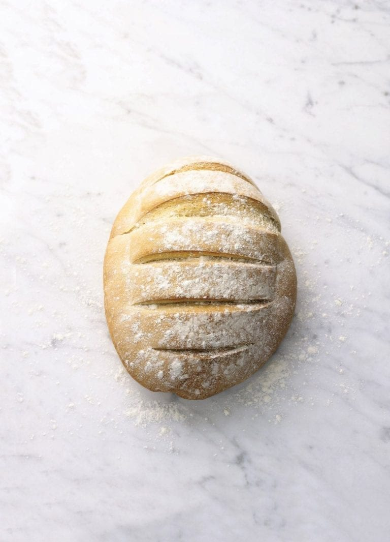 Basic white rustic loaf