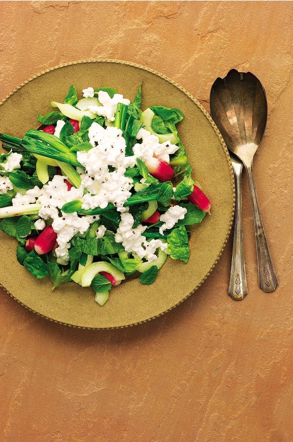 Grilled Spring Onions Cucumber Salad With Radishes And Cottage Cheese Delicious Magazine