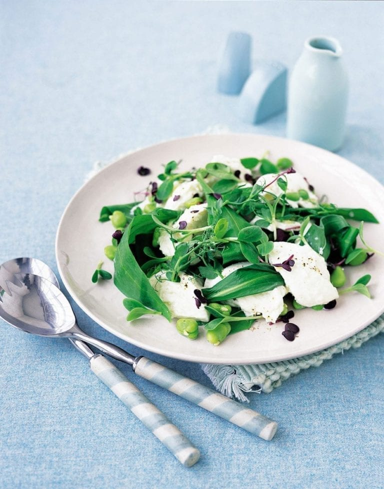 Buffalo mozzarella with broad bean and young leaf salad