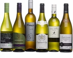 Wines to go with seafood starters