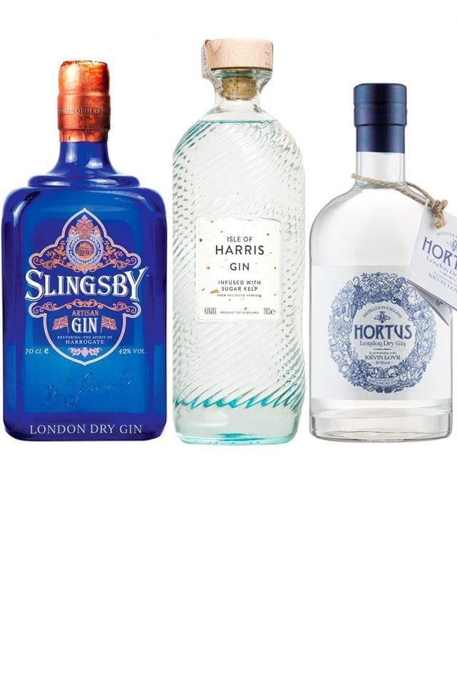 10 gins you need to try