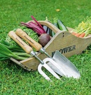 5 pieces of kit every beginner gardener needs