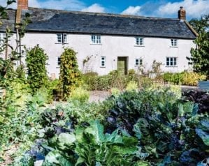 Cookery school review: River Cottage