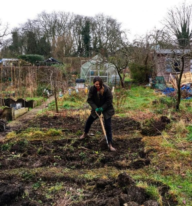 15 top gardening tips from folk who know