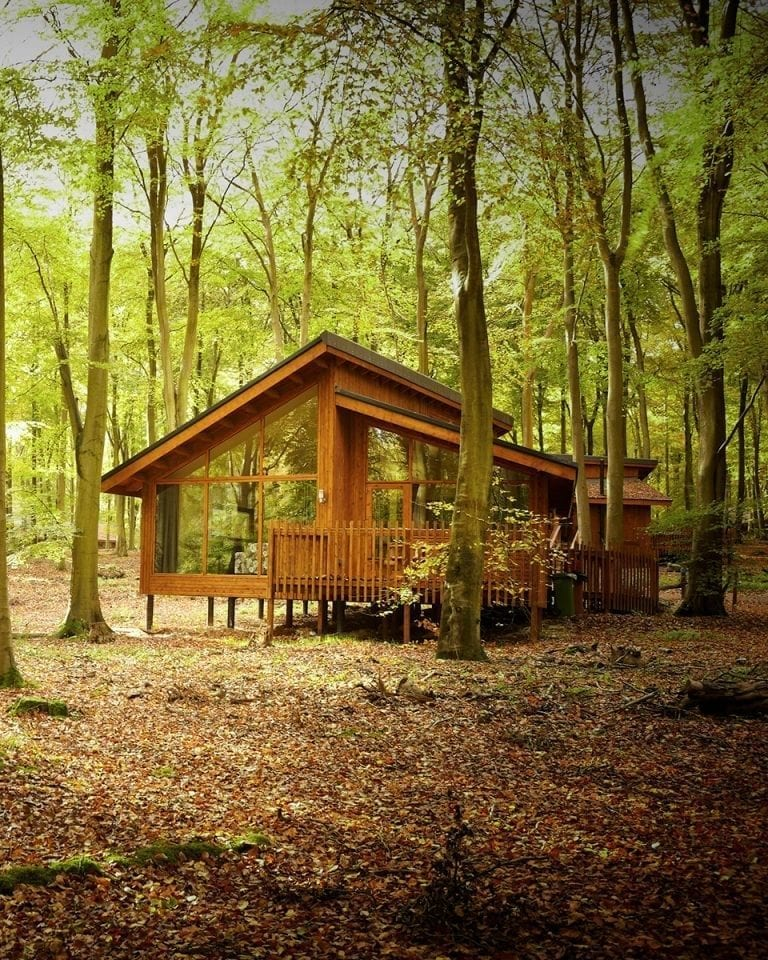 Forest Holidays, Blackwood, cabin review
