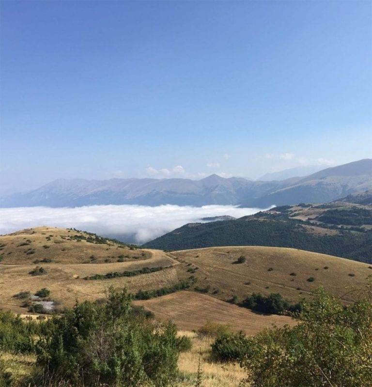 Amatrice: help the earthquake survivors