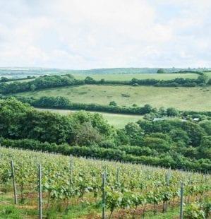 10 must-visit foodie destinations in Cornwall