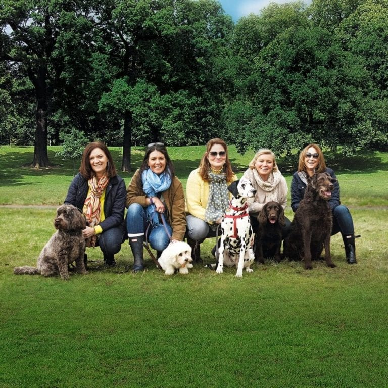 Dog tales: behind the scenes on a shoot with FIVE dogs