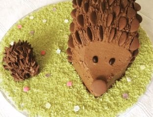 How to make a chocolate hedgehog cake