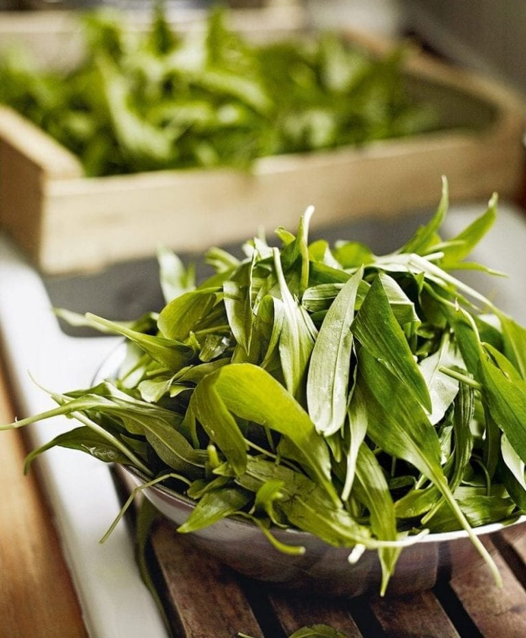 How to find wild garlic
