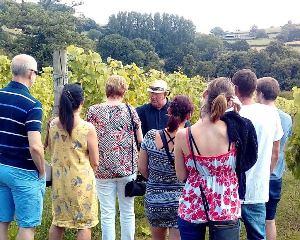 White Castle Vineyard Tour