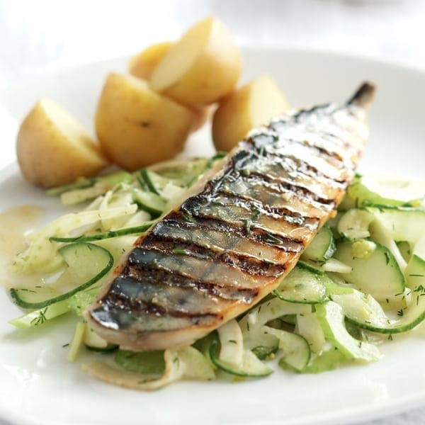 Griddled mackerel fillets with fennel and cucumber coleslaw