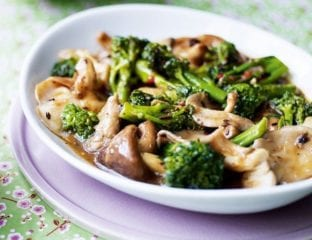 Broccoli and mixed mushrooms in garlic black bean sauce