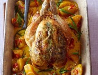 Creamy pot roast chicken