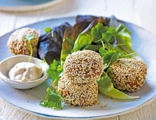 Sunflower seed falafel balls with tahini sauce