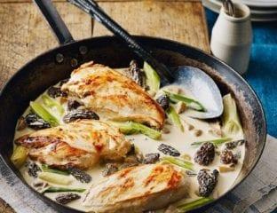 Raymond Blanc's chicken and mushrooms in wine sauce