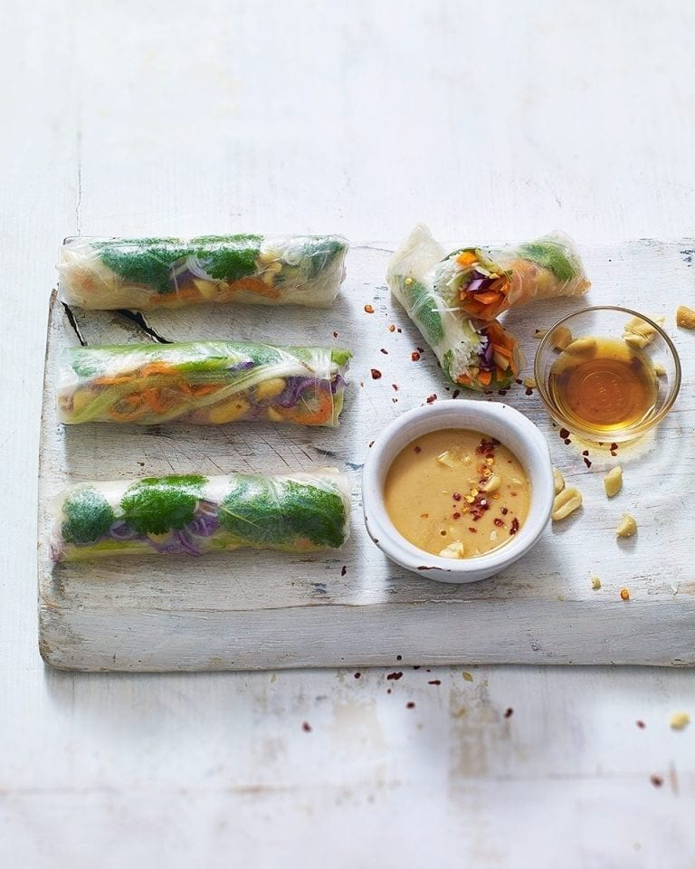 Vegetarian summer rolls with peanut dipping sauce